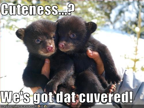 Cuteness...?  We's got dat cuvered!