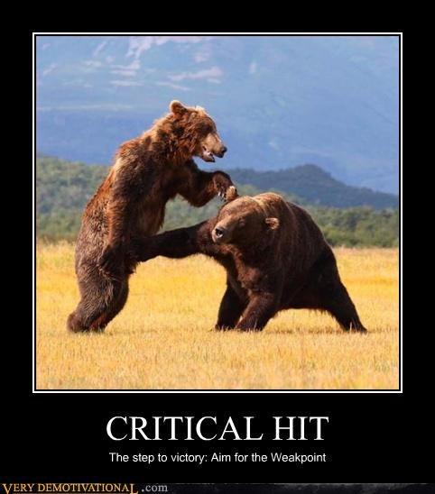 bears critical hit demotivational nut shot Pure Awesome