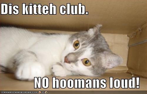 Dis kitteh club.  NO hoomans loud!