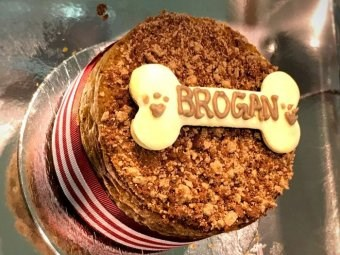 a photo of a cake with the name brogan on it cover for a story about a guide dogs
