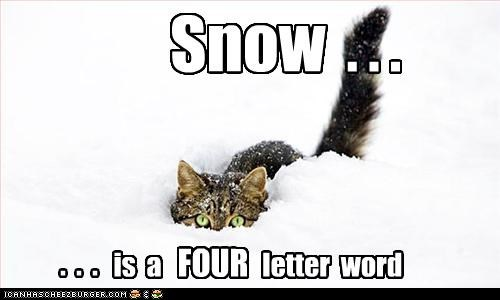 Snow is a letter word . . . . . . FOUR