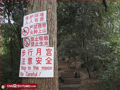 moon notice tree warning - 3220330240