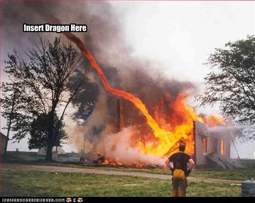 dragon,fire,house,wtf