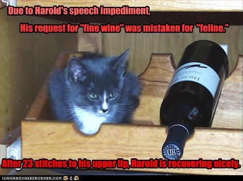 """Due to Harold's speech impediment, His request for """"fine wine"""" was mistaken for """"feline."""" After 23 stitches to his upper lip, Harold is recovering nicely."""