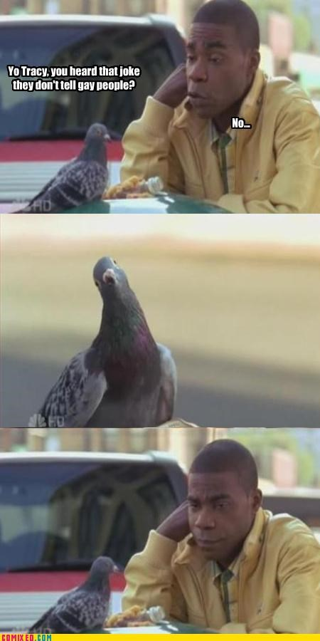 animals,celebutard,gay jokes,new york city,pigeons,the internets,Tracy Jordan,Tracy Morgan
