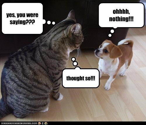 yes, you were saying??? ohhhh, nothing!!! thought so!!!