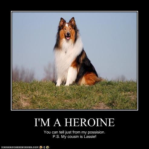 I'M A HEROINE You can tell just from my possision. P.S. My cousin is Lassie!