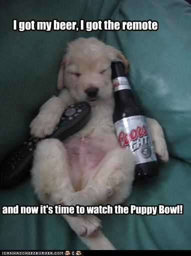 I got my beer, I got the remote and now it's time to watch the Puppy Bowl!
