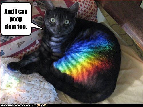 poop rainbows sunbath - 3236052736
