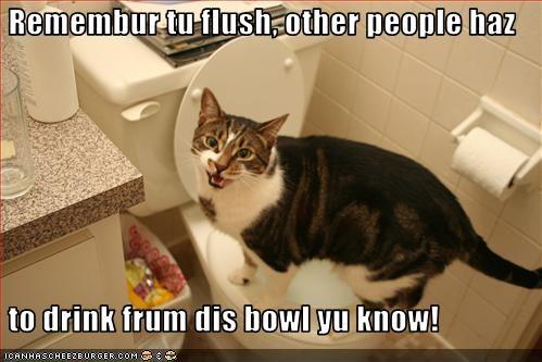 bathroom flush toilet - 3236516864