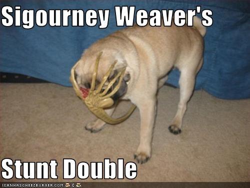 alien face hugger movies pug sigourney weaver