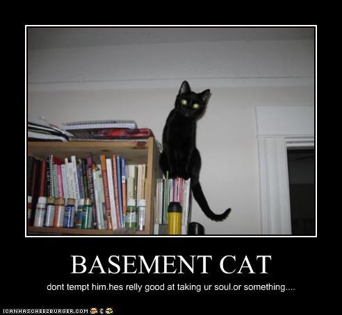 BASEMENT CAT dont tempt him.hes relly good at taking ur soul.or something....