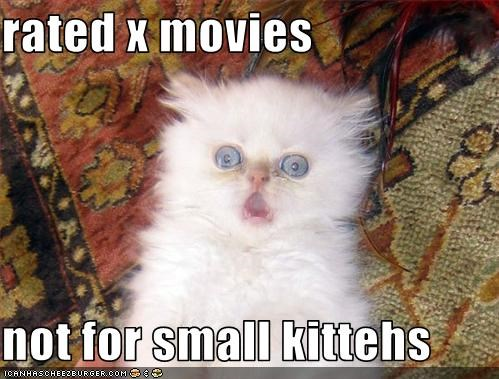 do not want,kitten,movies