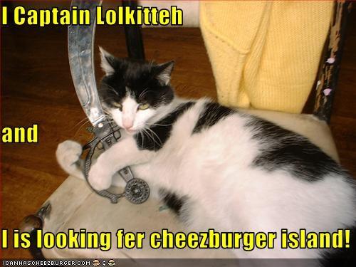 Cheezburger Image 3238189056