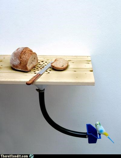 bird,bread,contraption,nom,recycling-is-good-right