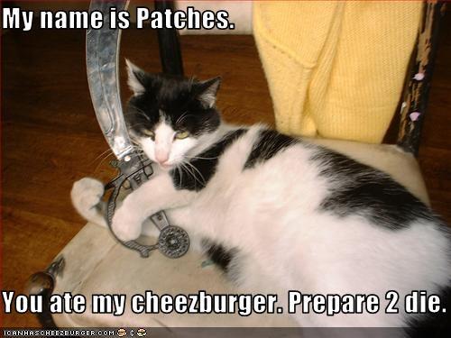 Cheezburger Image 3238855936