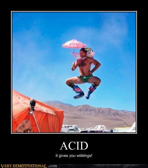 acid awesome burning man demotivational fantasy flying idiots Pure Awesome - 3239590144