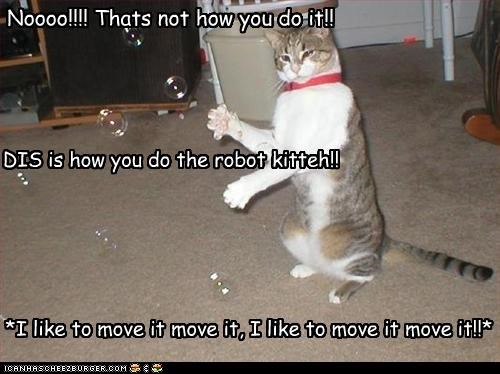 Noooo!!!! Thats not how you do it!! DIS is how you do the robot kitteh!! *I like to move it move it, I like to move it move it!!*