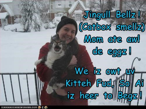 Cheezburger Image 3243575808