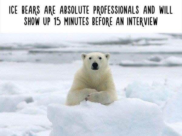 funny alternative animal facts