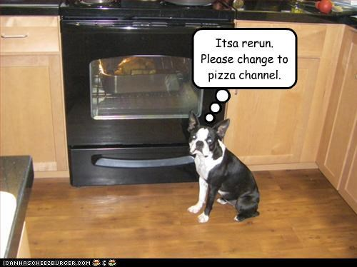 change,channel,french bulldogs,oven,pizza,reruns,Turkey,TV,watching