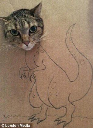 a funny cat looking like a dinosaur