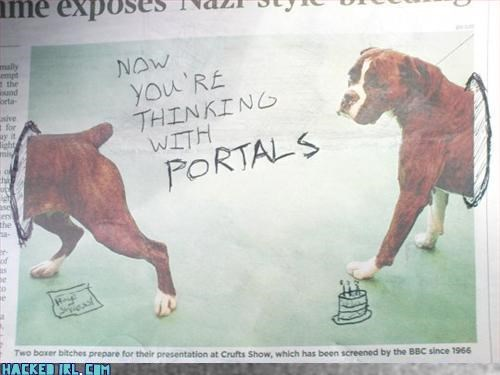animals newspaper - 3247833344