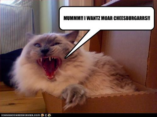 MUMMM!! I WANTZ MOAR CHEESBURGARRS!!