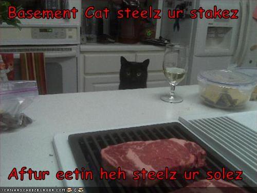 Cheezburger Image 3251889152