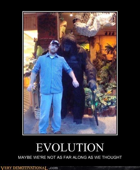 ape resemblance evolution - 3253631232