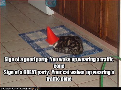 cone Party - 3254391552