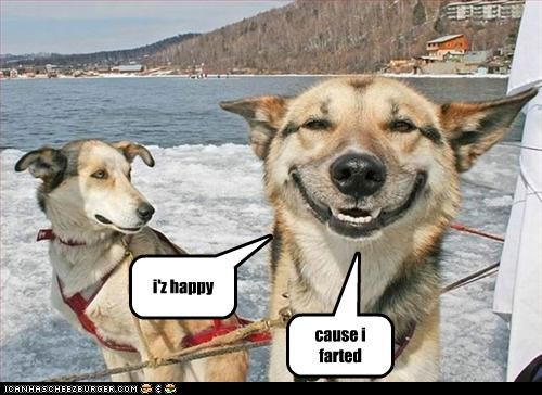 i'z happy cause i farted