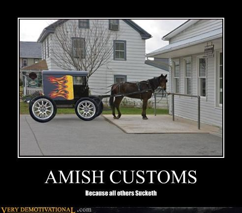 wtf custom buggy amish - 3257854464