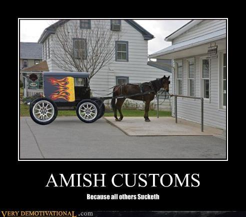 wtf custom buggy amish - 3257854464