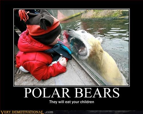 kids polar bear awesome angry