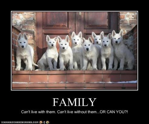 FAMILY Can't live with them. Can't live without them...OR CAN YOU?!
