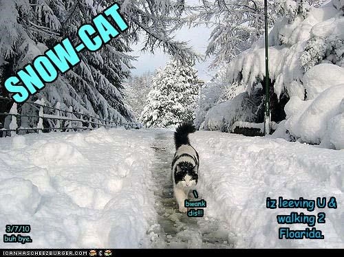 SNOW-CAT iz leeving U & walking 2 Floarida. \ bwank dis!!! 3/7/10 buh bye.