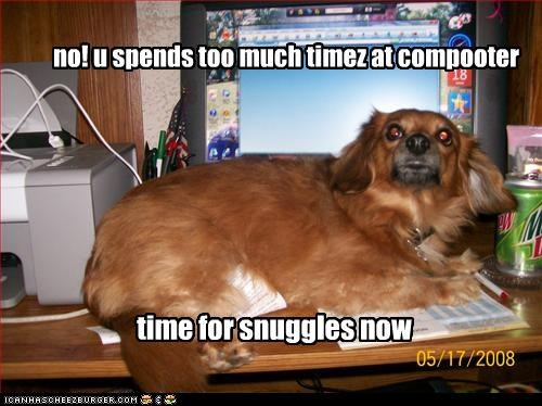 no! u spends too much timez at compooter time for snuggles now