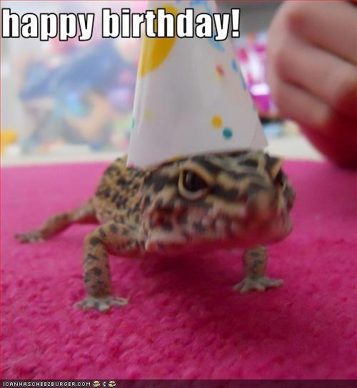 Lizard - happy birthday! ICANHASCHEE2EURGER cOM