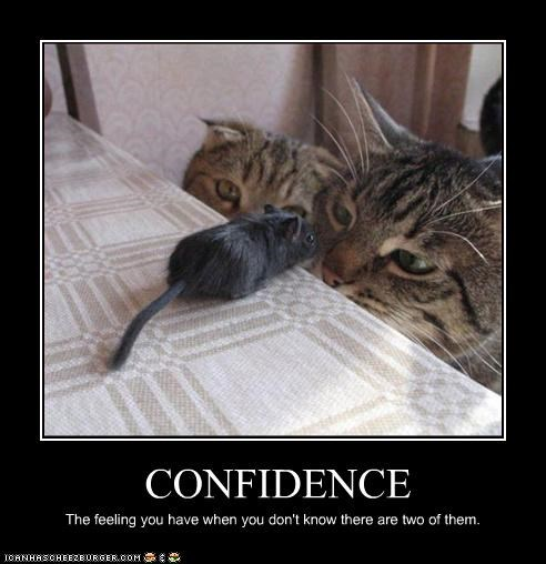 CONFIDENCE The feeling you have when you don't know there are two of them.