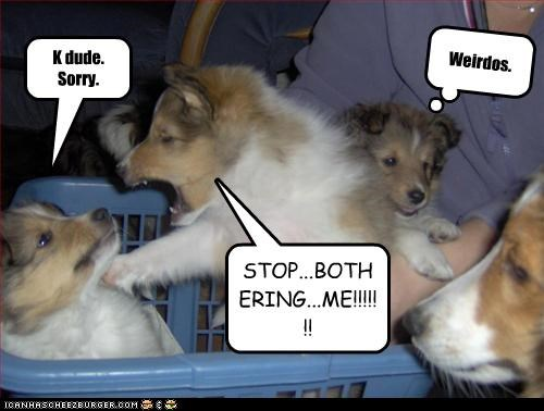 STOP...BOTHERING...ME!!!!!!! K dude. Sorry. Weirdos.
