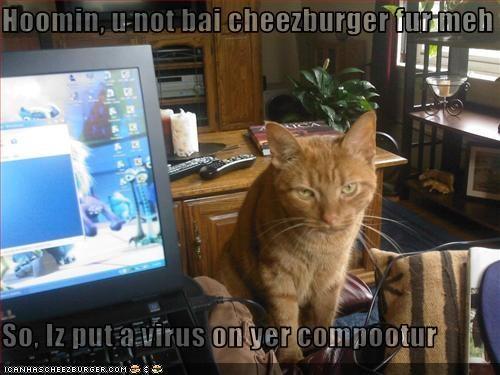 Cheezburger Image 3270122496
