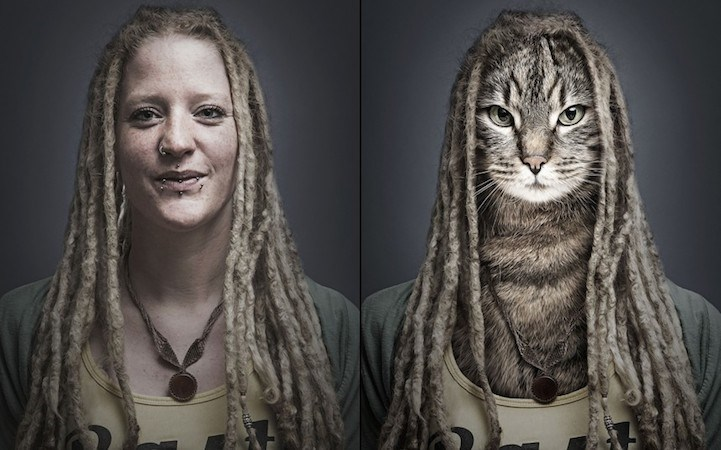 photoshopped photos of cats in owner's bodies