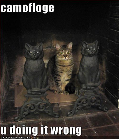 Cheezburger Image 3273461760