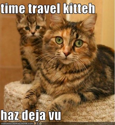 cute deja vu kitten time travel - 3273477632