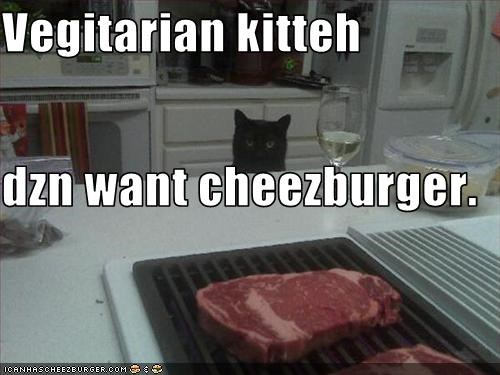 Cheezburger Image 3276813312
