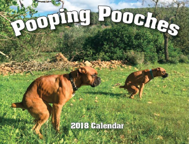 new pooping dogs calendar