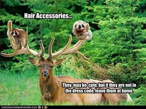 Hair Accessories... They may be cute, but if they are not in the dress code, leave them at home.