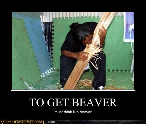 beavers demotivational hilarious idiots thought control wtf - 3280285184