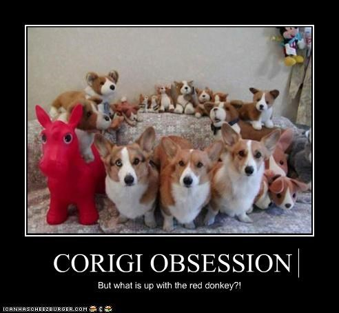 CORIGI OBSESSION But what is up with the red donkey?!